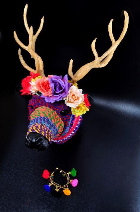 Ko Samui Colorful