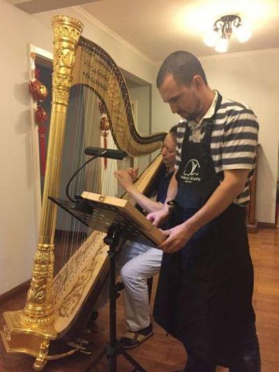 harp repair, harp technitian, israel harp store
