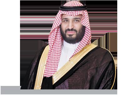 ولي ولي العهد محمد بن سلمان