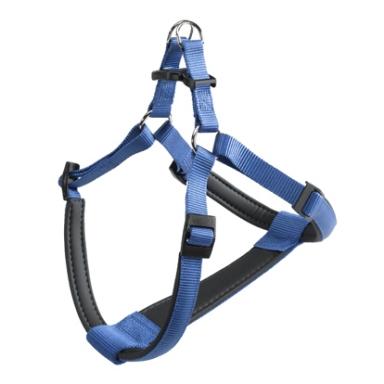 DAYTONA P XL כחול