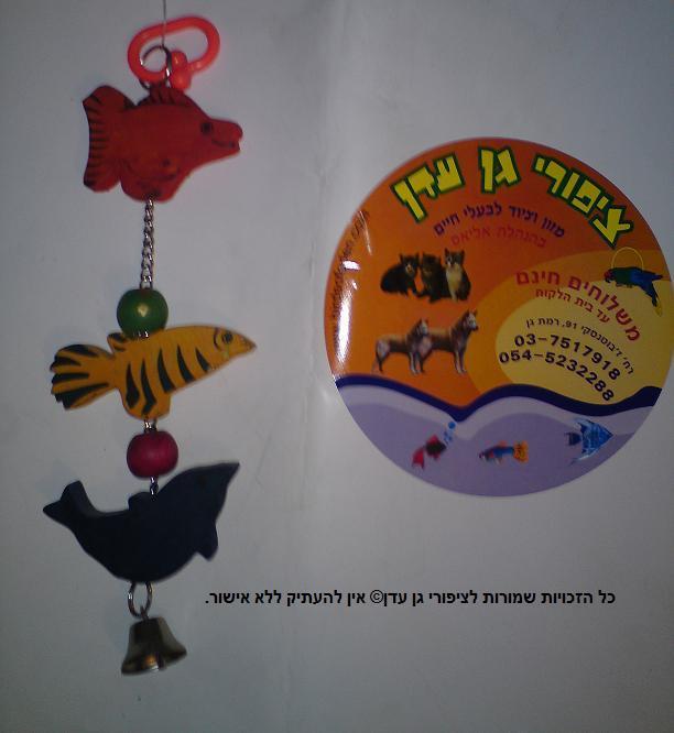צעצוע בינוני מעץ לתוכי קטן 3