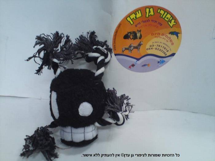 צעצוע פורים גולגולת