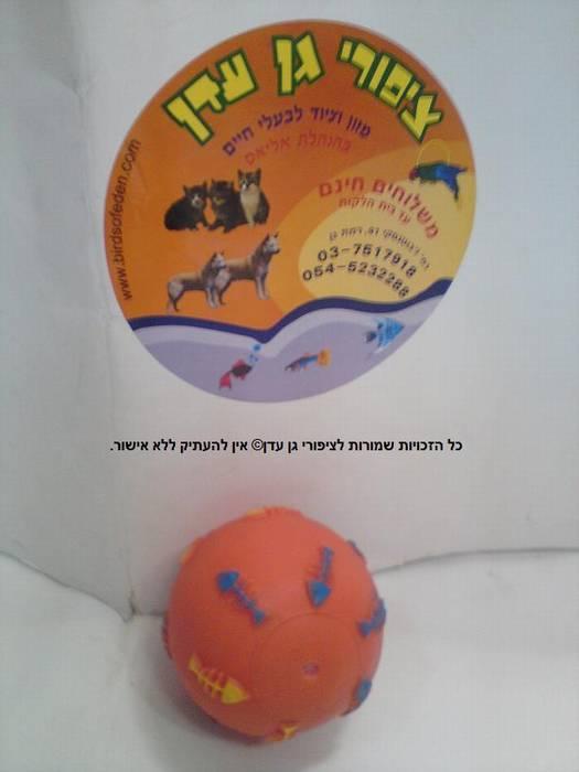 כדור מצפצף בצבעים שונים