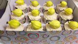 קאפקייקס עם אתרוגים מבצק סוכר, לחג הסוכות