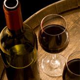 הקורס לייצור יין וניהול יקבי בוטיק