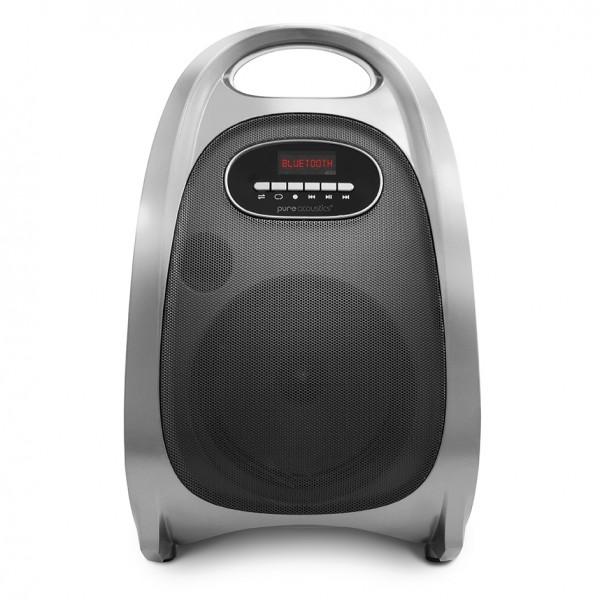 בידורית Pure Acoustics LX-60