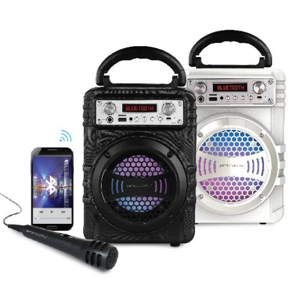 בידורית קריוקי Pure Acoustics LX30