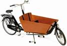 אופניים להסעת 3 ילדים