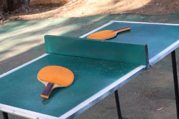 שולחן פינג פונג להשכרה