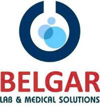 לוגו בלגר