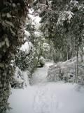 דרכים במנרה ביום שלג 2010