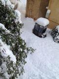 הרבה שלג במנרה ינואר 2015
