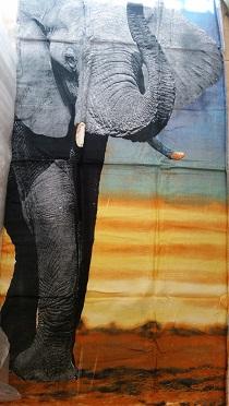 מגבות חוף עם הדפס פיל