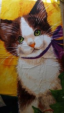 מגבת ים חתול