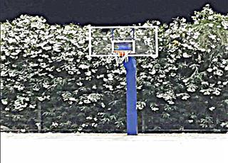 מגרש כדורסל - תאורת פעמון לד