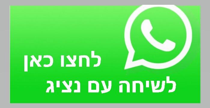דנית השכרת יאכטות| שיחה עם נציג| whatsapp