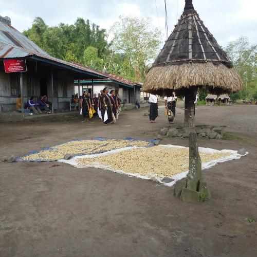 קפה ירוק - אנידונזיה Indonesia Java