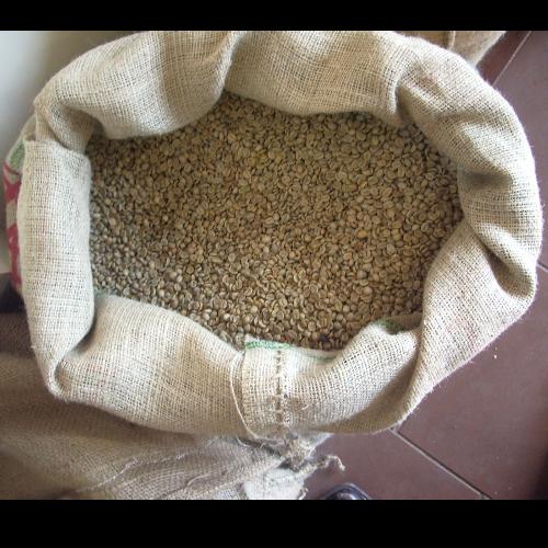 קפה ירוק - הודו קפי רויאל Kaapi Royal