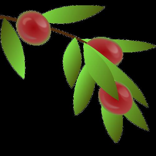 Kenya Nyeri AA