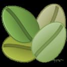 קפה ירוק פרו אורגני