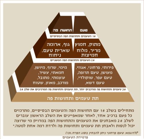 פרמידת הטעמים