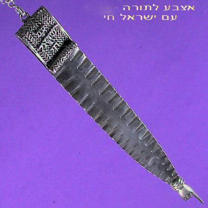 Am ISRAEL Chay Torah Finger