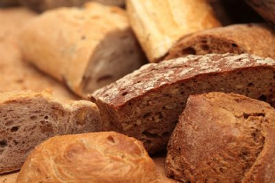 קישור לעמוד סדנת לחם