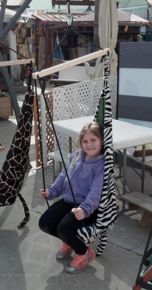 ערסל ילדים זברה - Hangover - צוות גדרון