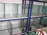 בניית אקווריום לחנויות למכירה ורבייה דגי נוי באקוריום מים מלוחים או אקווריום מים מתוקים. בניית אקווריומים בכל כמות ובכל גודל למכירה ולתצוגה. לדף הבית http://www.monodag.com