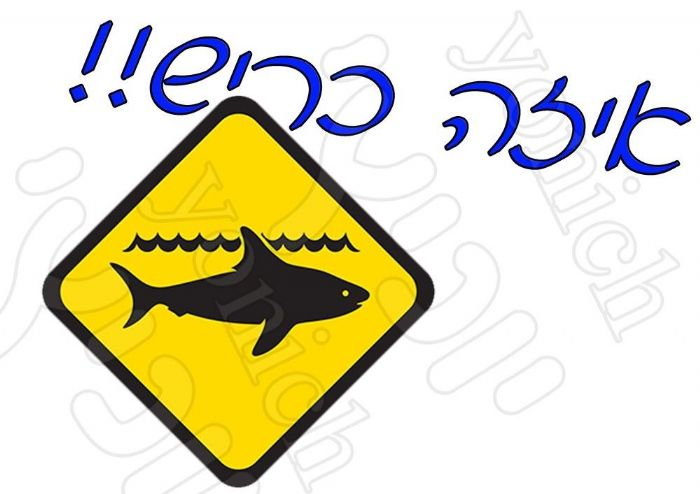 איזה כריש 365
