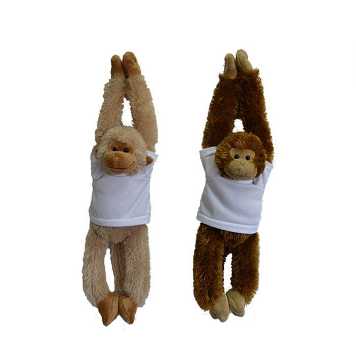 קוף עם ידיים ארוכות