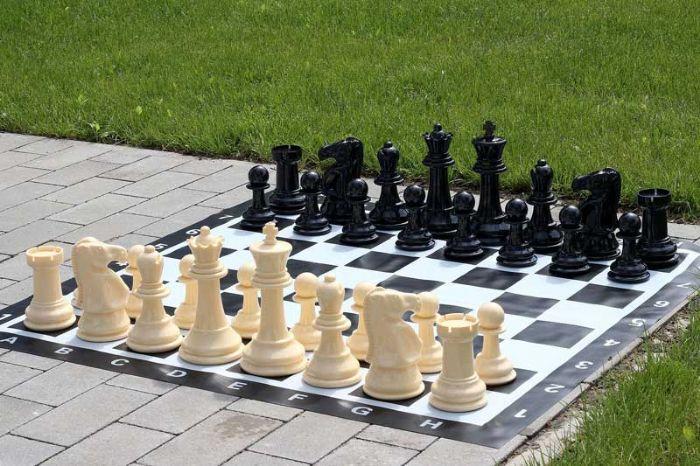 שחמט גינה ענקי