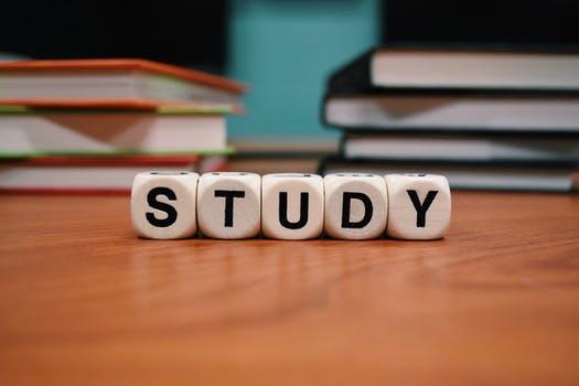 כתיבת עבודה סמינריונית בחינוך