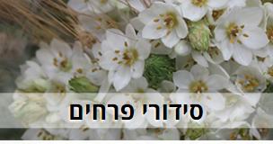 קישור לעמוד סידורי פרחים