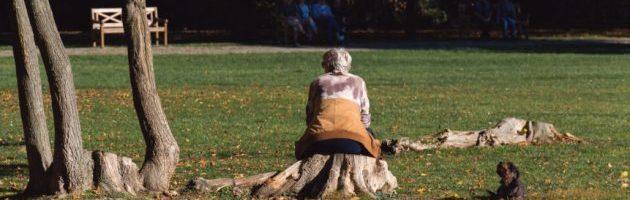 פרישה לגמלאות והשמנה
