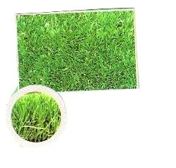 שטיח דשא 4 גוונים