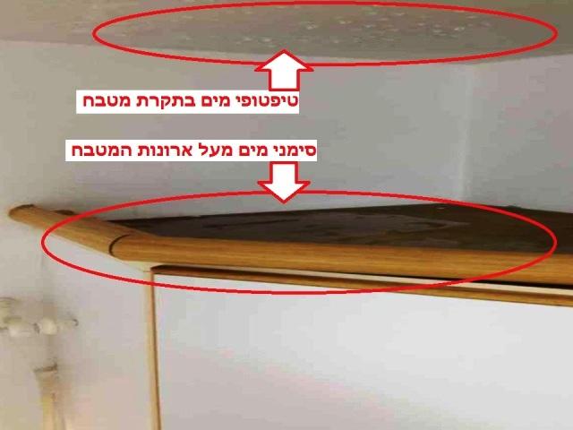 נזילה מהשכן במטבח - שמאי רכוש חיים שריקי