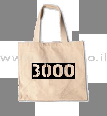 תיק 3000