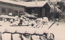 שלג הגדול בשריד פברואר 1950
