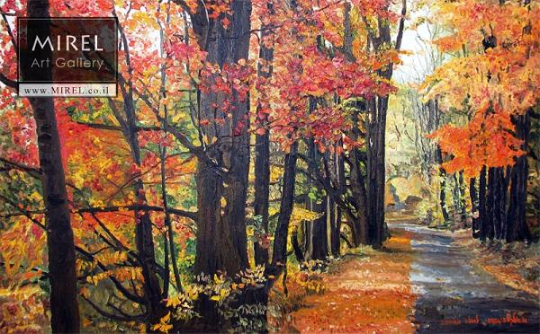 היער האדום , אירלנד