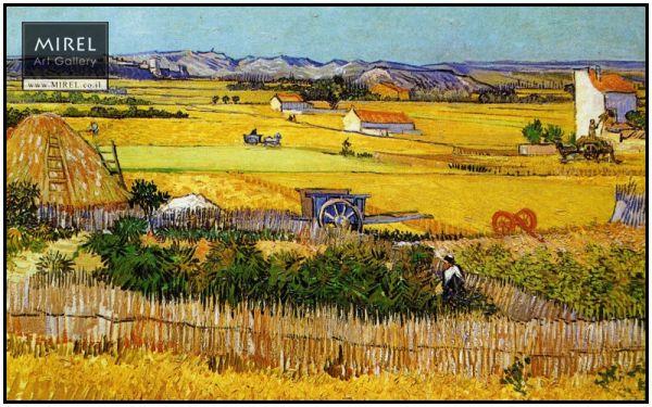 שדה הכפר