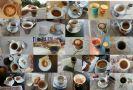 שלושים גוונים של קפה - גל שתרוג - אדמה יוצרת