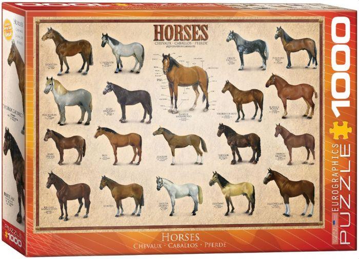 פאזל 1000 חלקים - סוסים
