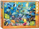 פאזל 1000 חלקים - צבעי האוקיינוס
