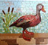רבקה - ברווז אמריקאי