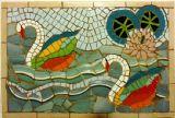 ורד - אגם הברבורים