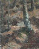 TREE TRUNKS   -   OILS 40 X 50 CMS