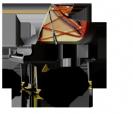 פסנתר כנף שימל  SCHIMMEL I 208 Tradition גרמניה
