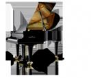 פסנתר כנף  שימל  SCHIMMEL K175 Tradition גרמניה