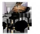 פסנתר כנף שימל SCHIMMEL K219 Tradition גרמניה